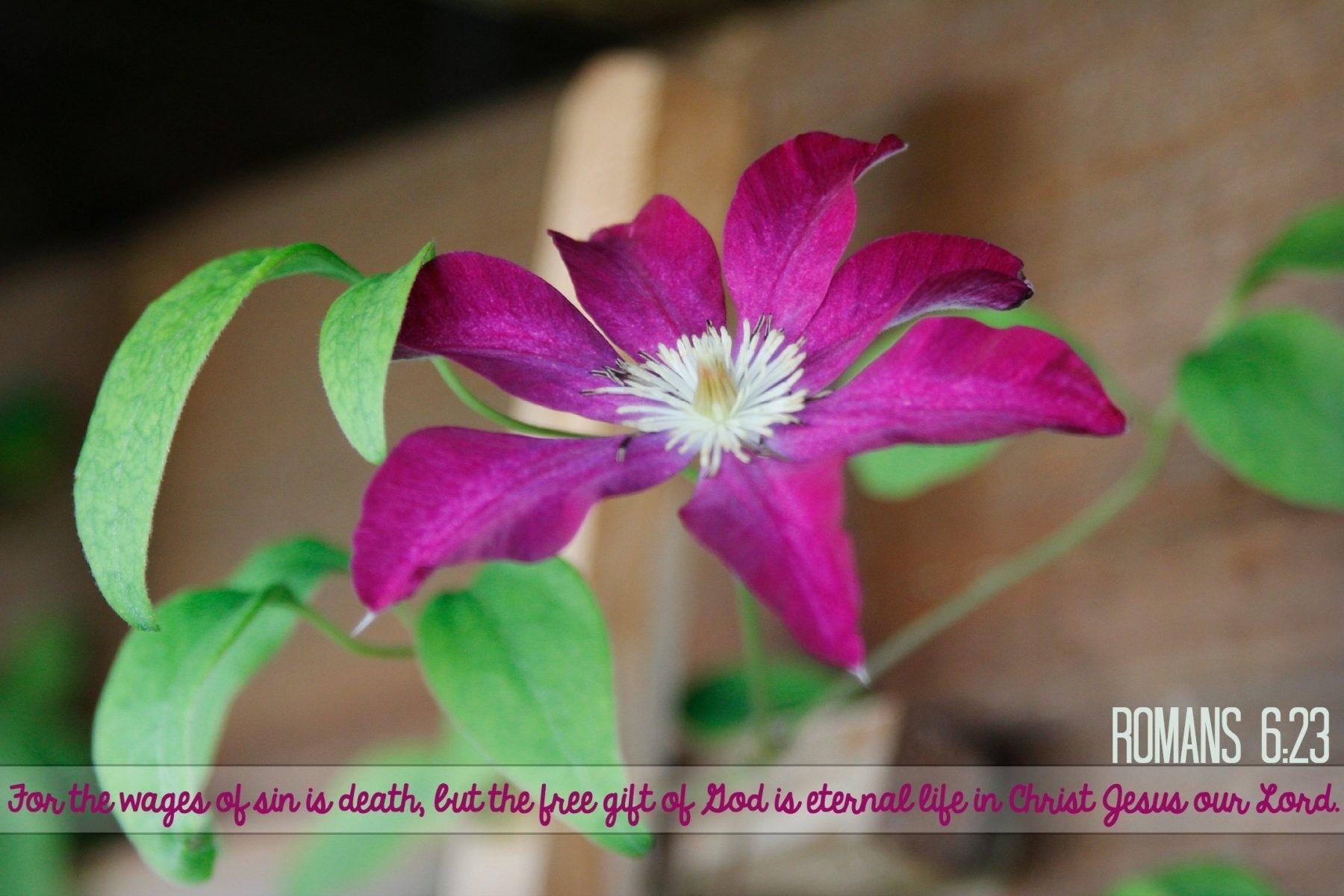 D2DL-Romans6:23