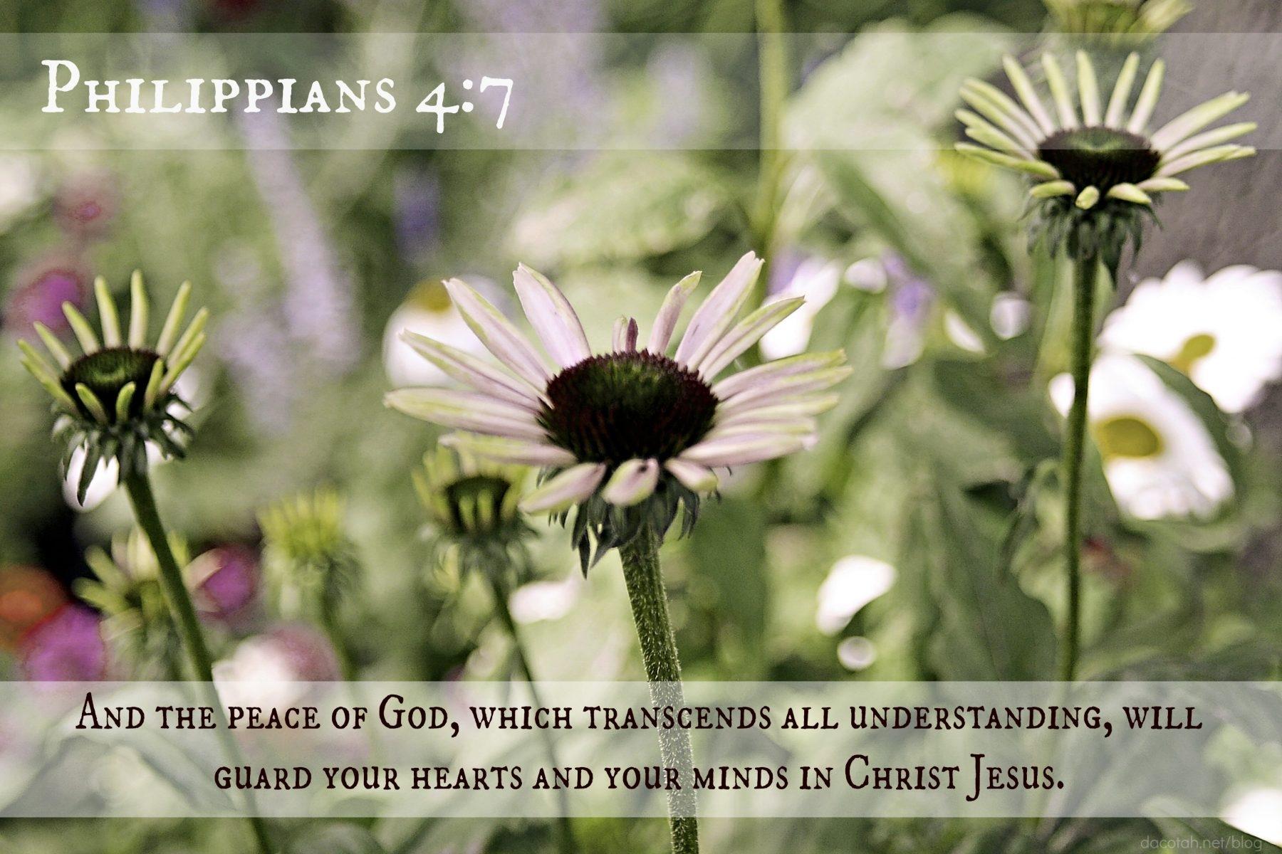 D2DL-Philippians4:7