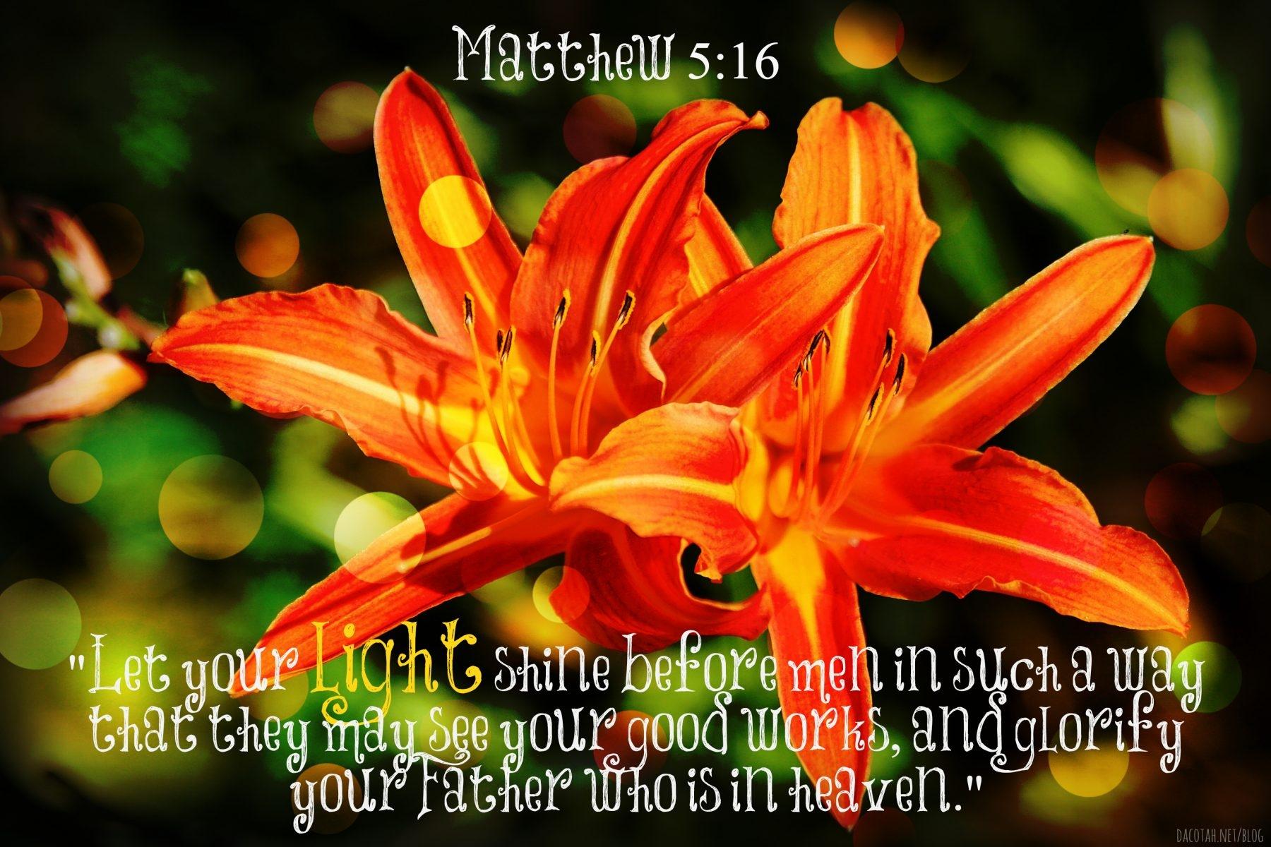 D2DL-Matthew5:16