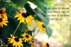 D2DL-Psalm96:12