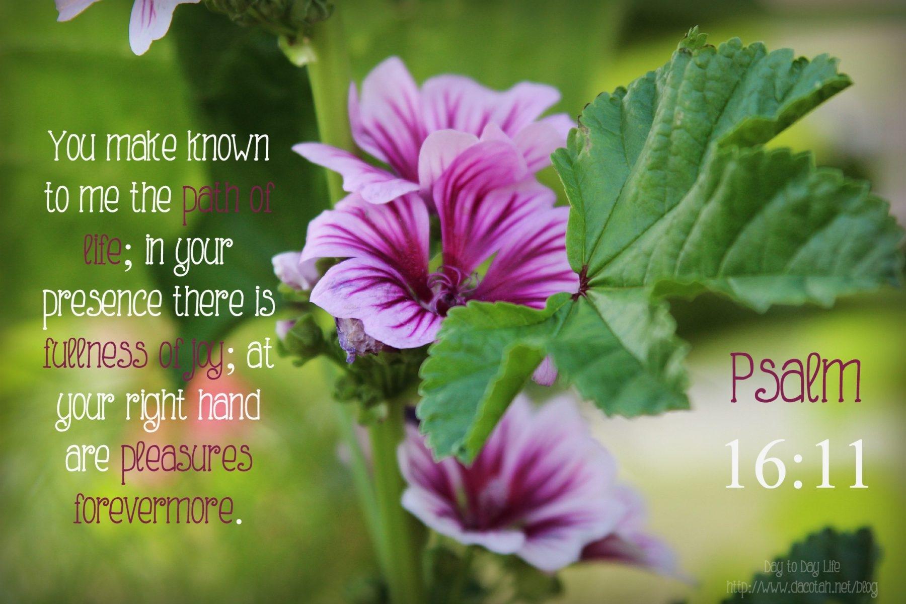 D2DL-Psalm16:11