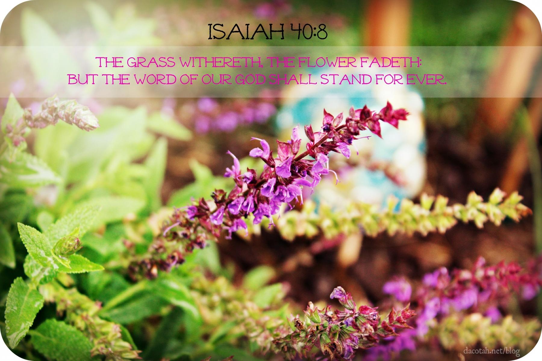 D2DL-Isaiah40:8